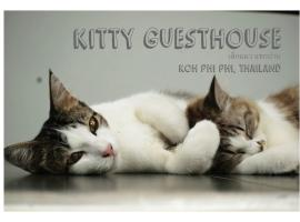 Kitty Guesthouse