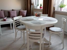 come&stay Zielona Góra, apartment in Zielona Góra