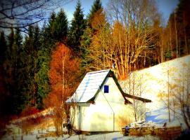 Dziewięćsił-domek w górach