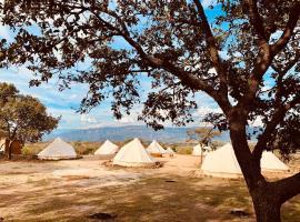 Sky Tequila Glamping Hotel, camping resort en Amatitán