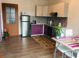 Apartment for family and friends in Sopron