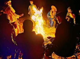 Desert Dream Camp