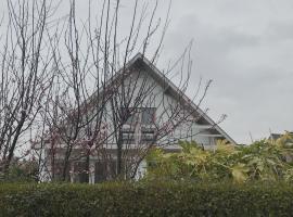 Villa Zuid, pet-friendly hotel in De Haan