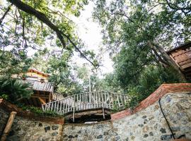 Le casette sull'albero di VILLA ALBA