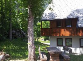 Apartments Lake Bohinj
