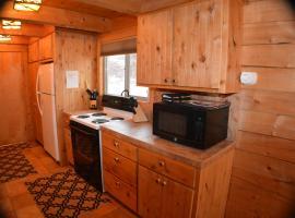 Nice cabin on the San Juan River, fishing, Hot Tub, pet-friendly hotel in Pagosa Springs