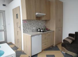Apartamenty Augustów Wilcza 2, apartment in Augustów
