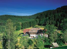 Waldhotel Fehrenbach, hotel in Hinterzarten
