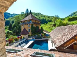 Castel Damandre, hotel in Arbois