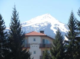 Хотел Мишел, хотел в Банско