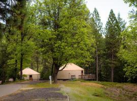 Yosemite Lakes Hillside Yurt 11