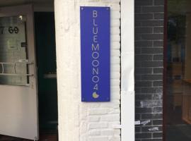 B&B BlueMoon040