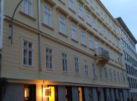 Luxury Apartment Novobranska