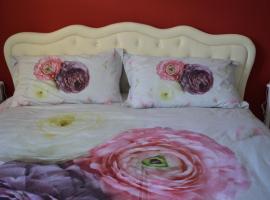 Appartamento del Cuore, Hotel in Castrocaro Terme e Terra del Sole