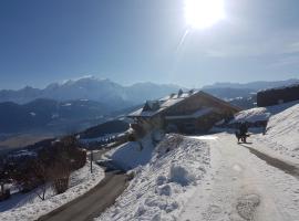 La Joubarbe au Balcon du Mont-Blanc