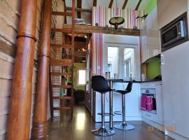 Loft-Terraza Laurel, apartment in Logroño
