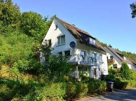 Luxury Holiday home in Brilon-Wald Sauerland with private terrace