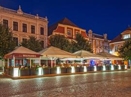 Wieniawa, pet-friendly hotel in Leszno