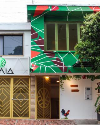 Zamia Hostel