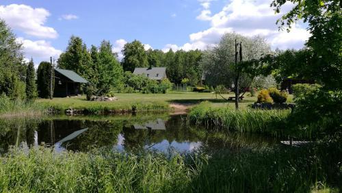 Nature Resort Stirnelė