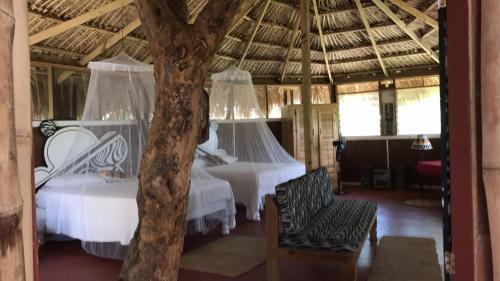 Moringa Ingadi Village