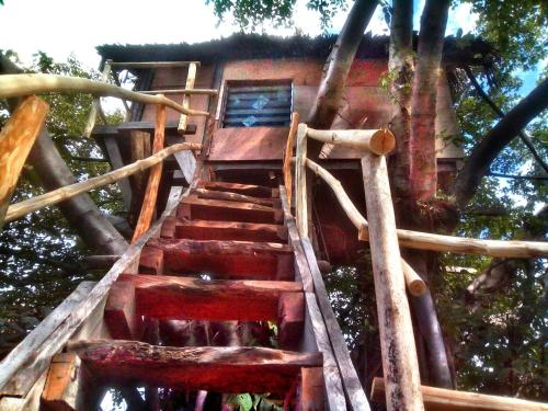 Volcano Eco Treehouse
