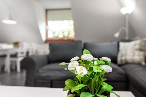 Vakantieappartementen centrum Oudewater