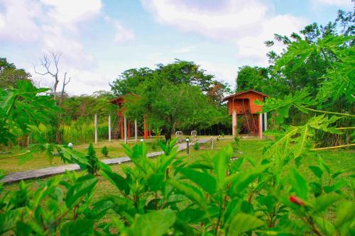 Sigiri Royal Point Tree House
