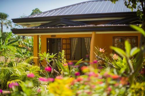 Chekesh Casa