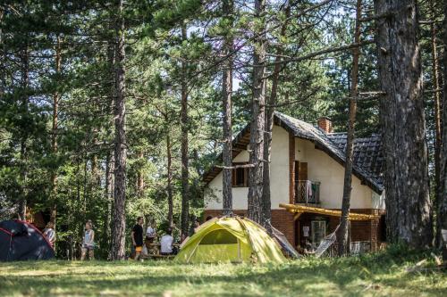 Tara Hostel & Hiking Center