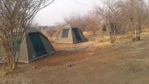 Pop Lamont Camp