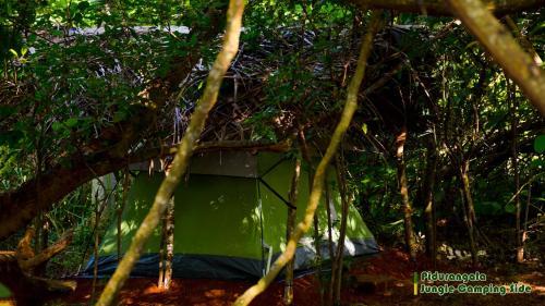 Sigiri Jungle Camping