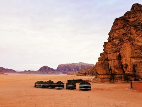 Desert Bird Camp