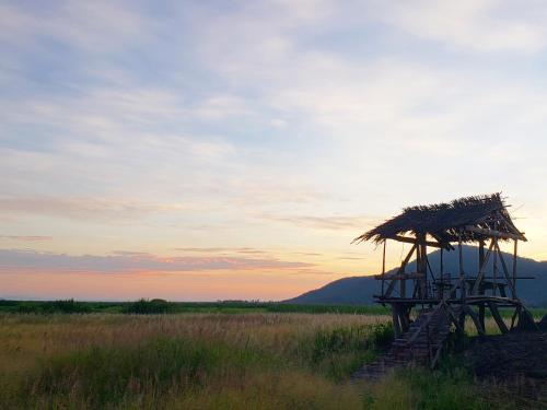 Shire Eco Camp