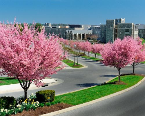 The Inn at Virginia Tech - On Campus