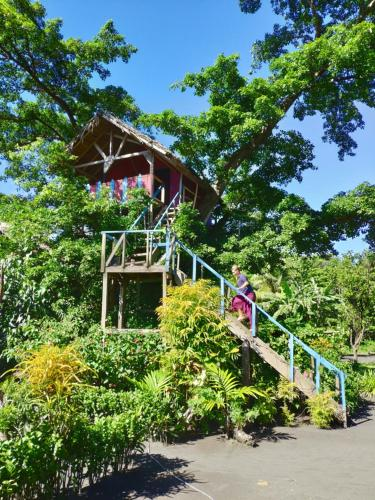 Tanna Volcano View Tree house