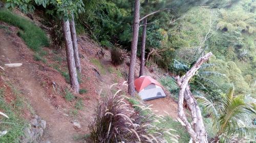 Blue Mountain Wilderness Retreat (BMWR)