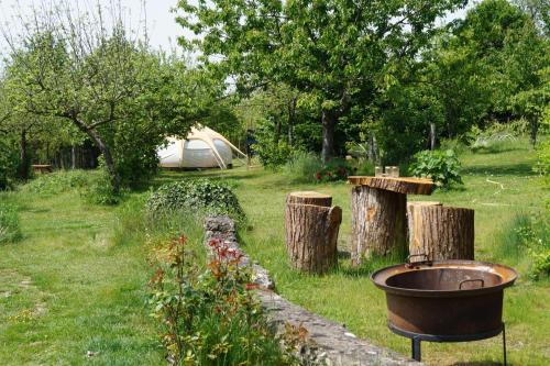 Loire Valley Llama Farm Stay