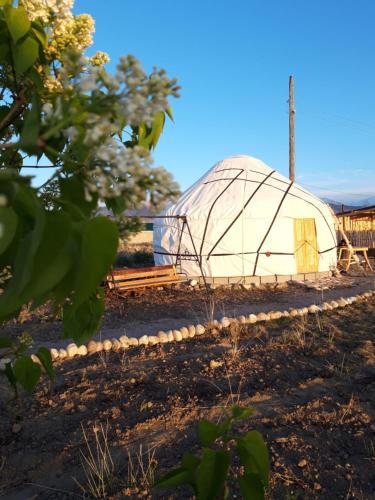 Yurt camp Sonun