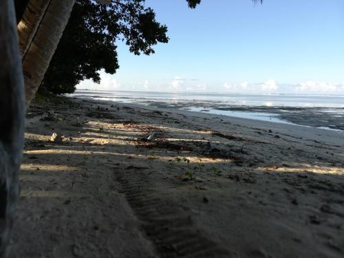 Barefoot Beach Rentals