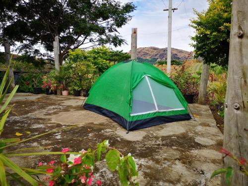 Mountain Oasis Farm Stay