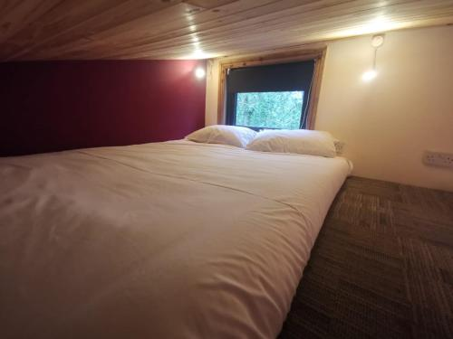 Tiny House-Hot Tub-St Clears-Pembrokeshire-Tenby