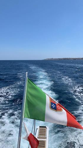 Sea BaronIV