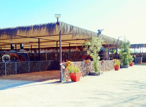 Camping El Huerto