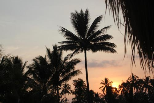 Garden Sunset Bungalows