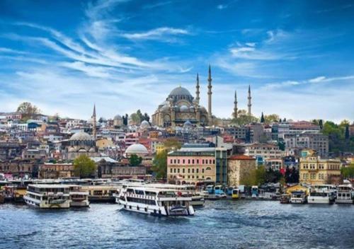 Istanbul Merit House