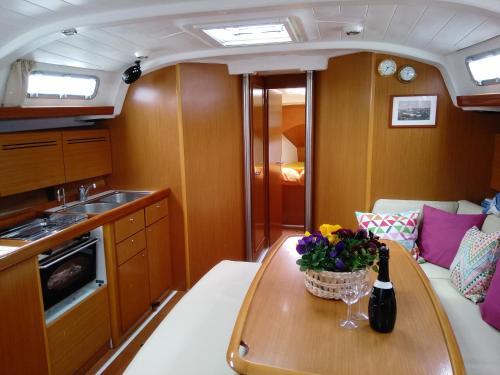 Sealife experience on Sailboat ALEXEJ