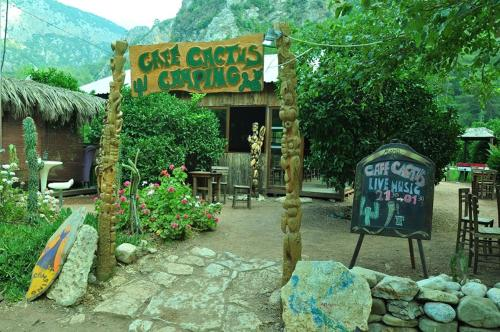 cafe cactus camping