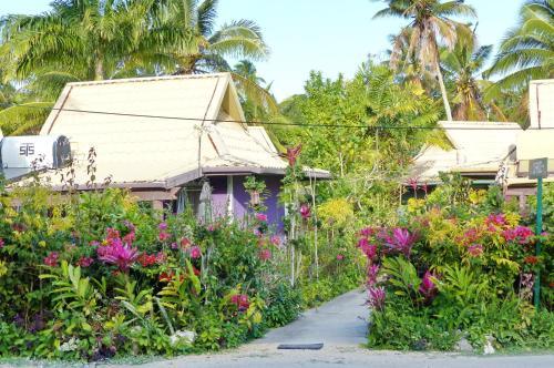 The Friendly Islander (Papiloa's Place)
