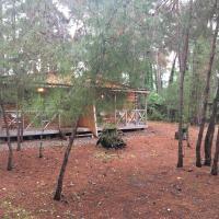 Cottages on Gosdacha